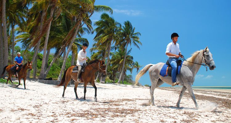 Beach fun, Mozambique Horse Safaris