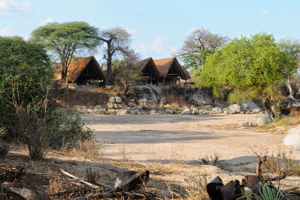 Tanzania family safari tent at Mwagusi