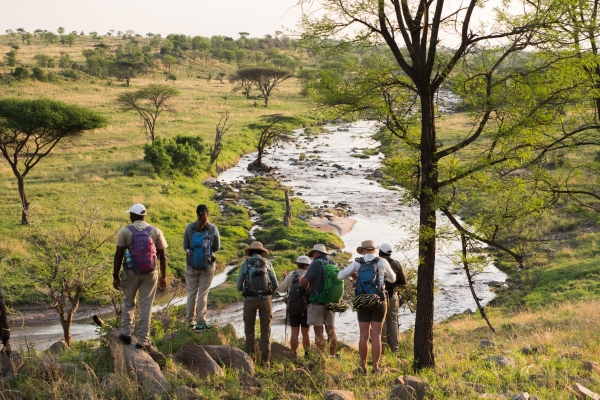 Waiting for action on a ledge, annual wildebeest migration, Serengeti National Park