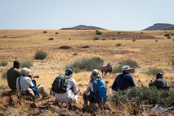 Desert Rhino Camp, black rhino tracking, Namibia wildlife enthusiast safaris