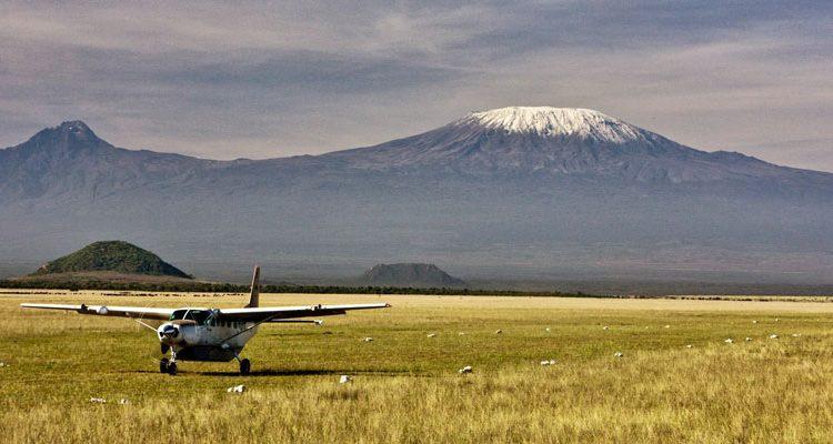 Mount Kilimanjaro an zebra below grazing