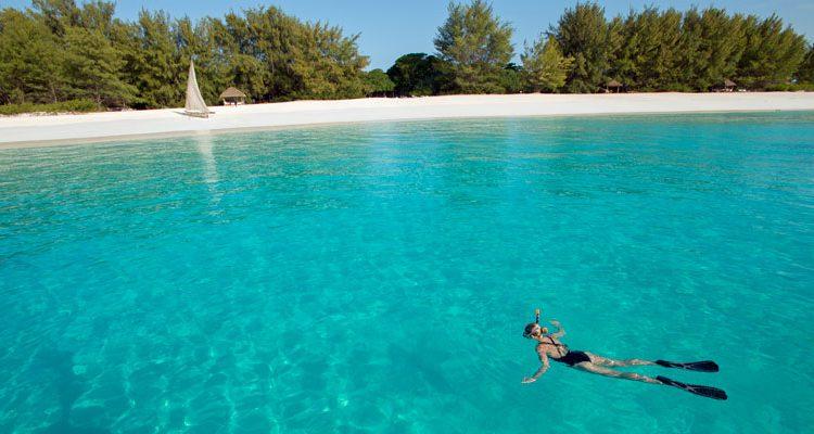 zanzibar island Mnemba reef snorkelling