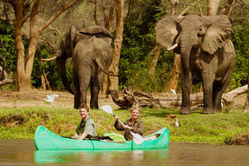 Tusk and Mane canoeing with elephants
