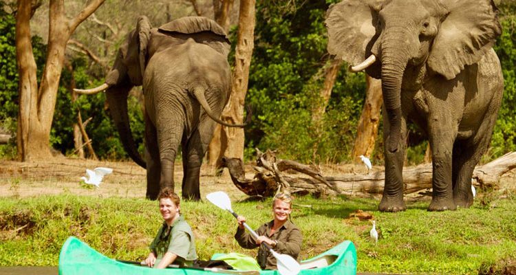 Tusk and Mane safaris canoeing with elephants