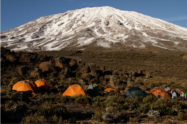 On the way up the mountain Lemosho route Mount Kilimanjaro