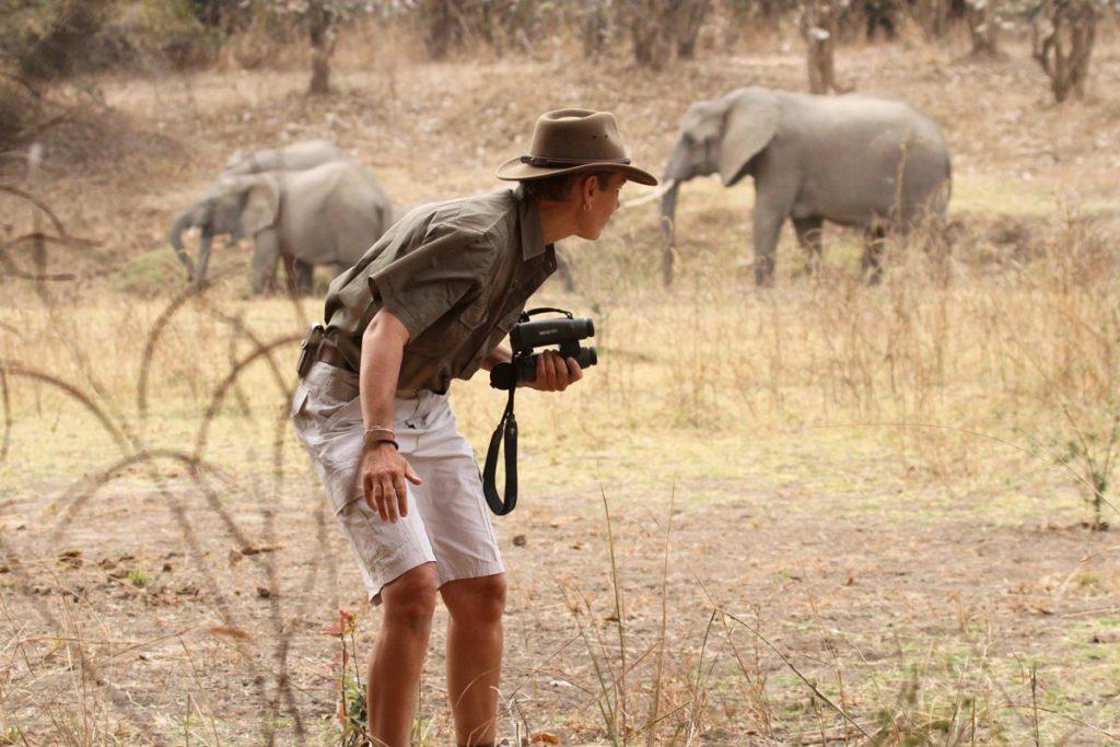 Deb Tittle tracking elephants with binoculars