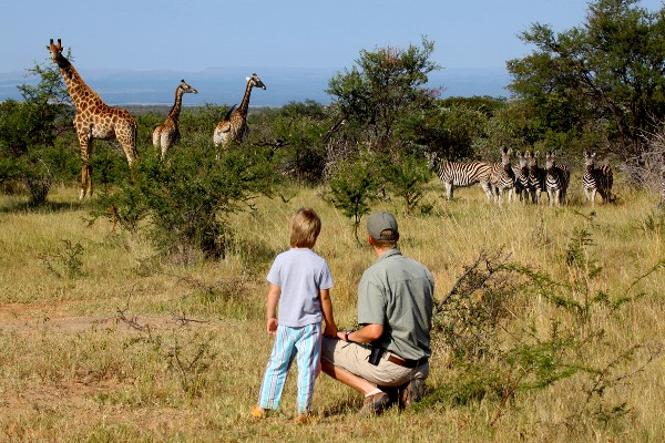 Malaria Free Bush and Beach - Ant's Hill family wildlife safari father and son watching giraffe and zebra