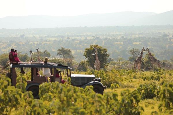 Cottar's Camp, Masai Mara, Kenya, Kenya and Zanzibar