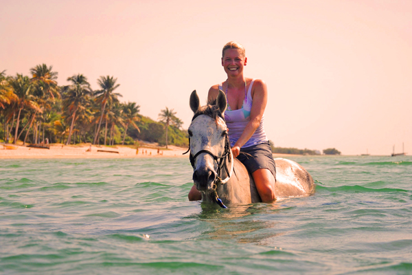 Swimming with the horses in northern Mozambique, Mozambique Horse Safari lodge based day rides