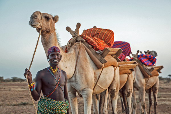 Ride a camel in Lakipia, northern Kenya, Ol Malo lodge based day rides