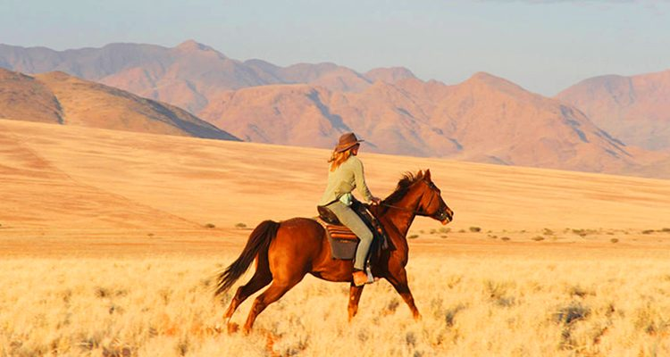 Lodge based day rides: riding safaris lady and horse galloping in Namibia's desert at full pelt