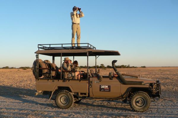 Drumbeat Safaris Wildlife spotting on a game drive Annelies Zonjee-James