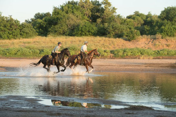 Riding with Limpopo Horse Safaris, Botswana