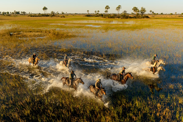 Riding through the floodwaters in the Okavango Delta with African Horseback Safaris