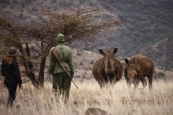 Out with the rangers at Lewa Wilderness
