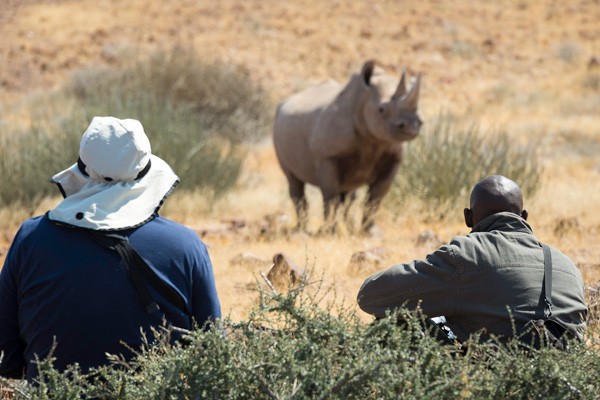 Tracking rhino at Desert Rhino Camp