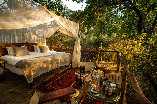 Star beds in Sapi Springs Camp, Sapi Private Reserve, Mana Pools'