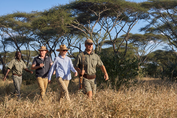 Tracking rhinos on a bush walk at Singita Pamushana