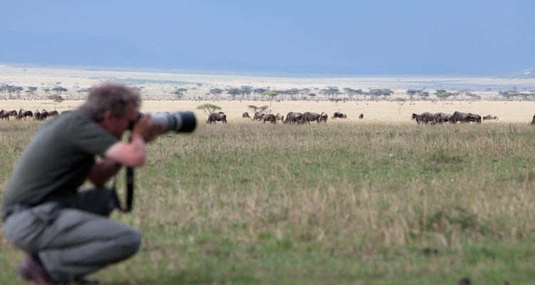 Photography On Safari