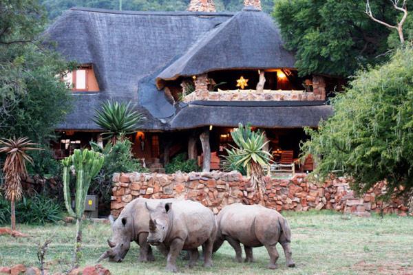 Timeless safari camps
