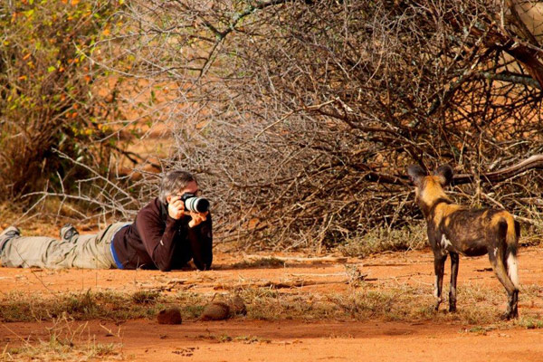 Storage is key as you will take hundreds of photos. Wild dog, Laikipia Wilderness Camp, Laikipia, Kenya