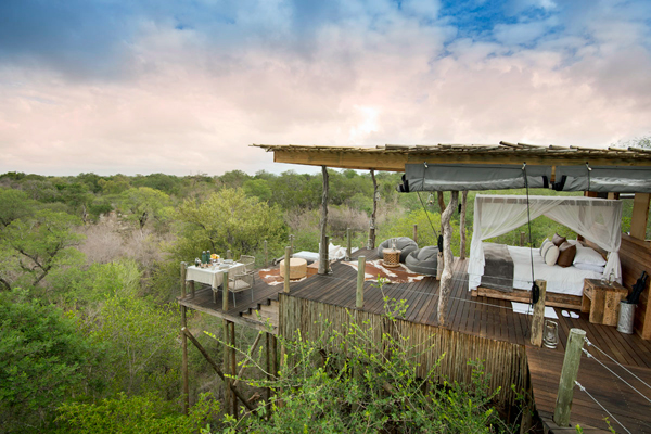 Kingston Treehous is a couple or a family's private vantage over the Sabi Sands