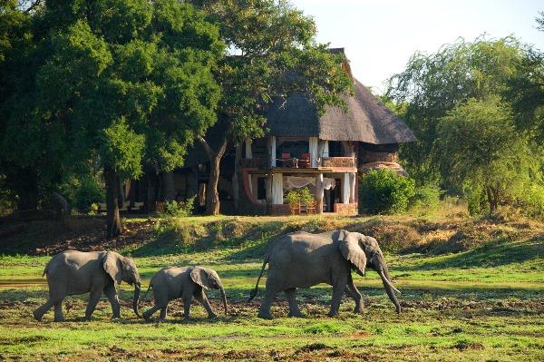 Luangwa Safari House setting