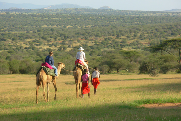 Camel Safaris with Karisia Walking safaris Kenya