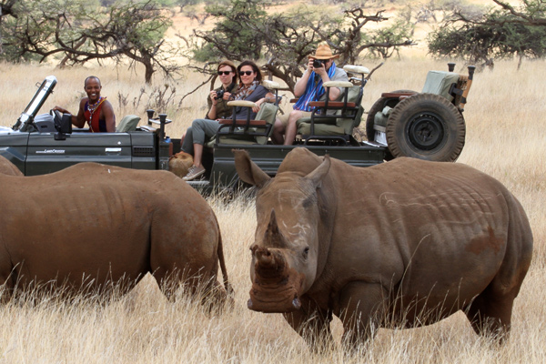 Rhino at Lewa Wilderness