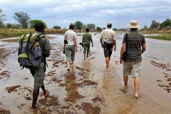 Walking safaris at Takwela Camp, North Luangwa