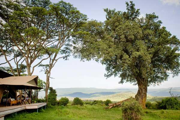 Entamanu Ngorongoro - Perched high on the Ngorongoro Crater rim, this incredible highland retreat has spectacular views