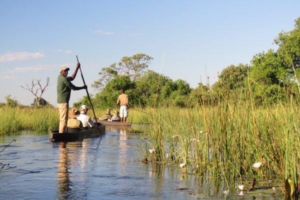 Gliding through the Okavango Delta via mokoro - two boats with guests and boatmen