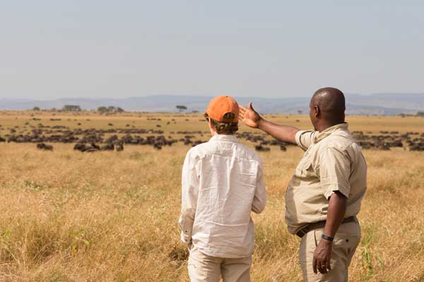 Serengeti Safari Camp - If you really want a wildebeest migration fix then this is the place to choose.