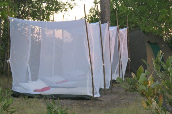 Fly camping - art installation or school dormitory? row of fly camps