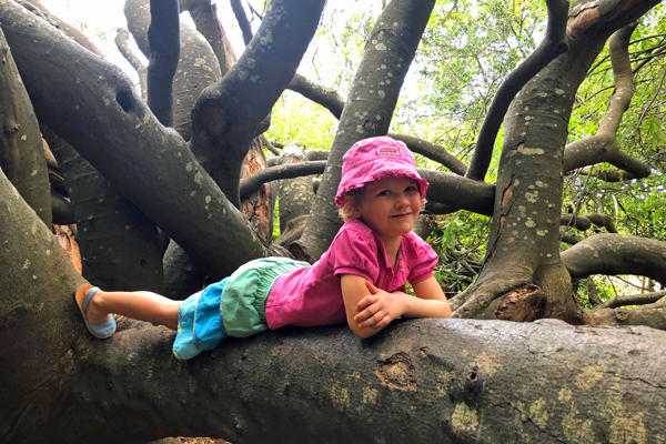 Bella playing in the trees at The Roundhouse credit Rosanna Pile