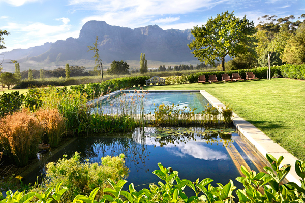 Eco pool and wraparound views of the mountains, Boschendal Farm
