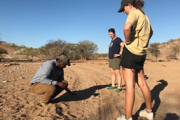Looking for the elusive rhino Namibia family safari