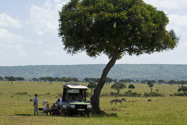 Wildlife drive at Mara Plains Camp