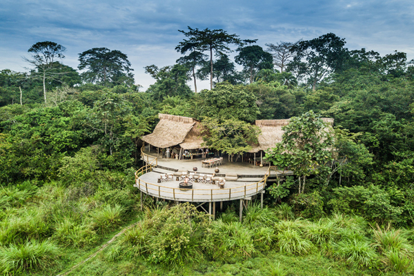 Beautiful Lango Camp set in the forest