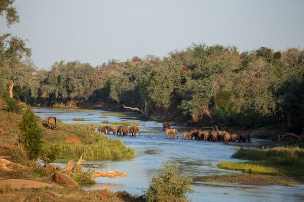 Elephant crossing the river near Pafuri Camp