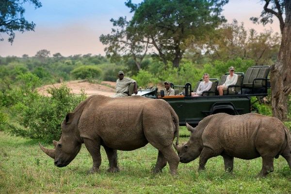 A great rhino sighting from while on a game drive from Tanda Tula