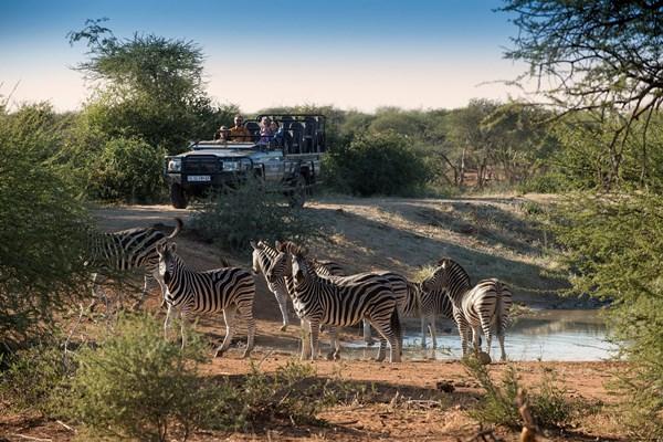Family wildlife drive at Madikwe Safari Lodge