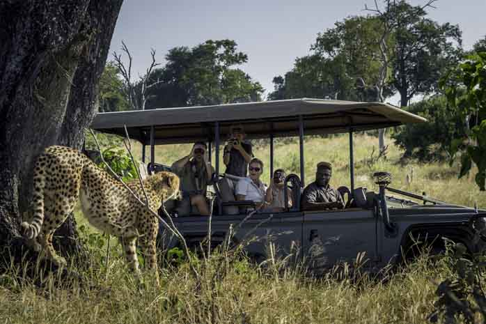 Enjoying a family wildlife drive from Little Vumbura camp