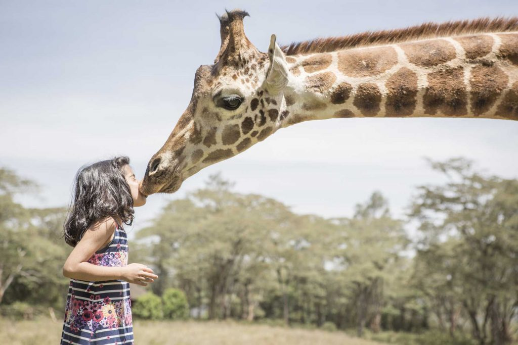 Meeting the locals at Giraffe Manor, Nairobi, Kenya