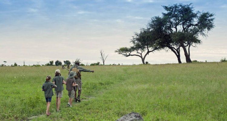 Somalisa Acacia Walking safari unususal family holidays