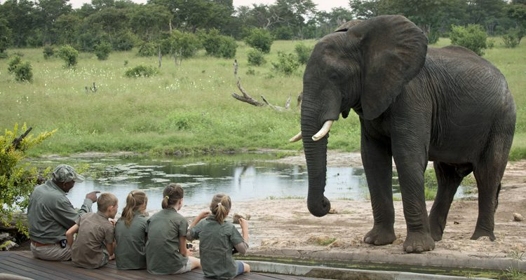 reasons to go on a family safari - children with ele at Somalisa