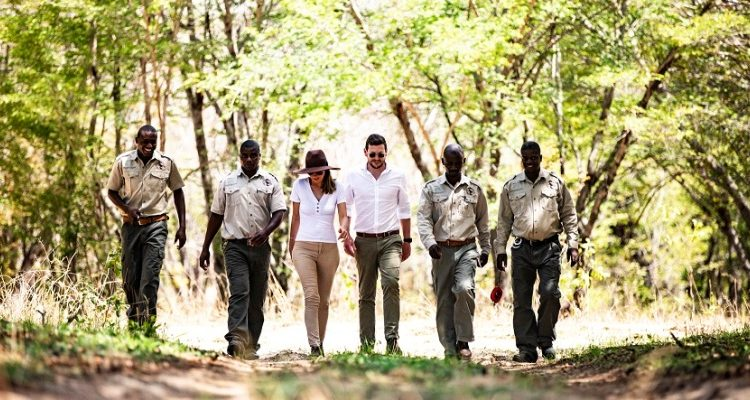 What happens at safari lodges when the guests don't come?