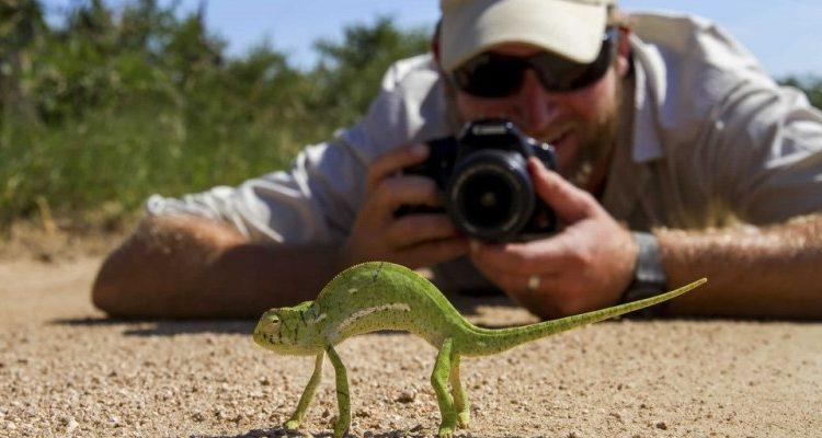Specialist safaris to book ahead