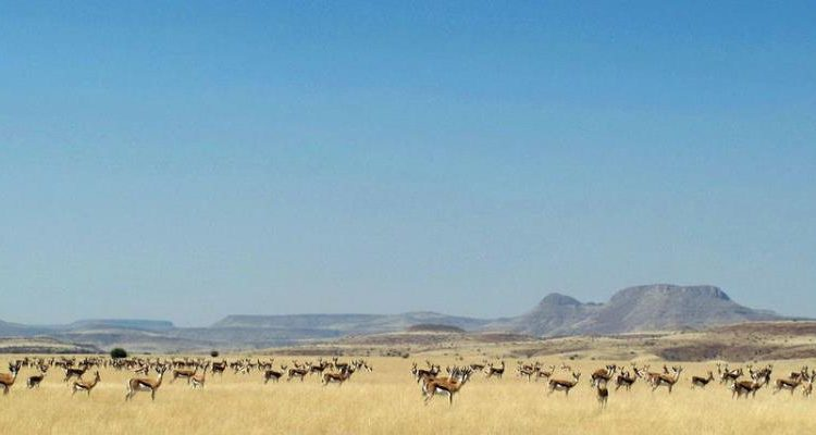 Can I go now – Namibia