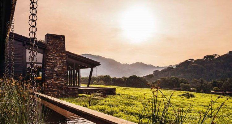 Can I go now – Rwanda Safari